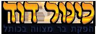 בר מצווה בכותל המערבי | כינור דוד